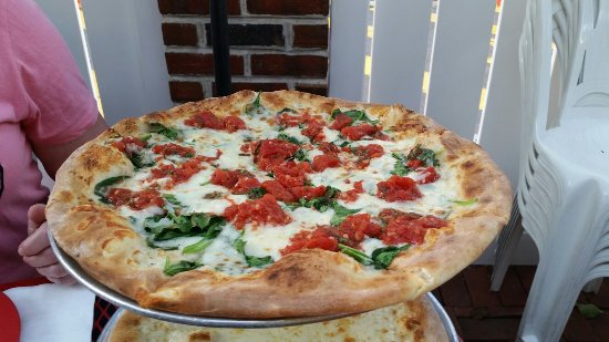Piccini Wood Fired Brick Oven Pizza